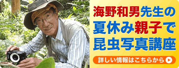 海野和男先生の夏休み親子で昆虫写真講座への申し込みはこちらから